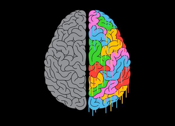 Two Halves Brain