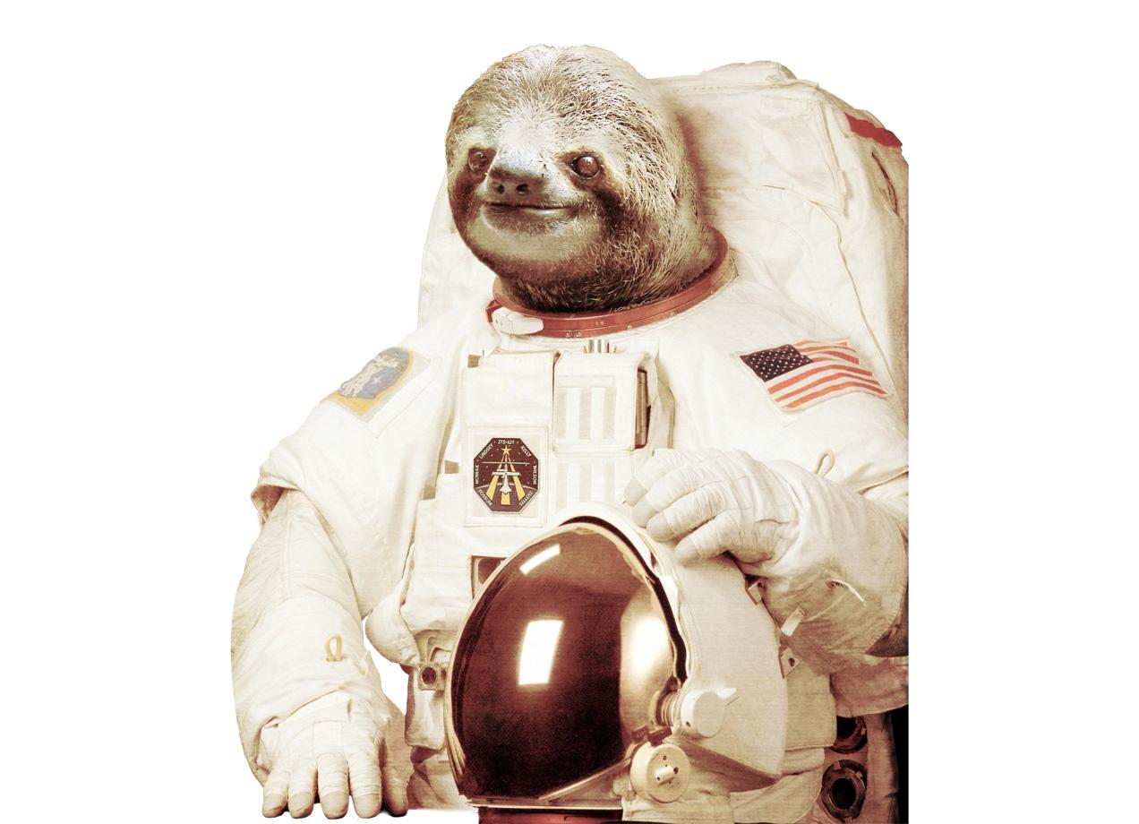 Astronaut Sloth by Bakus  Threadless