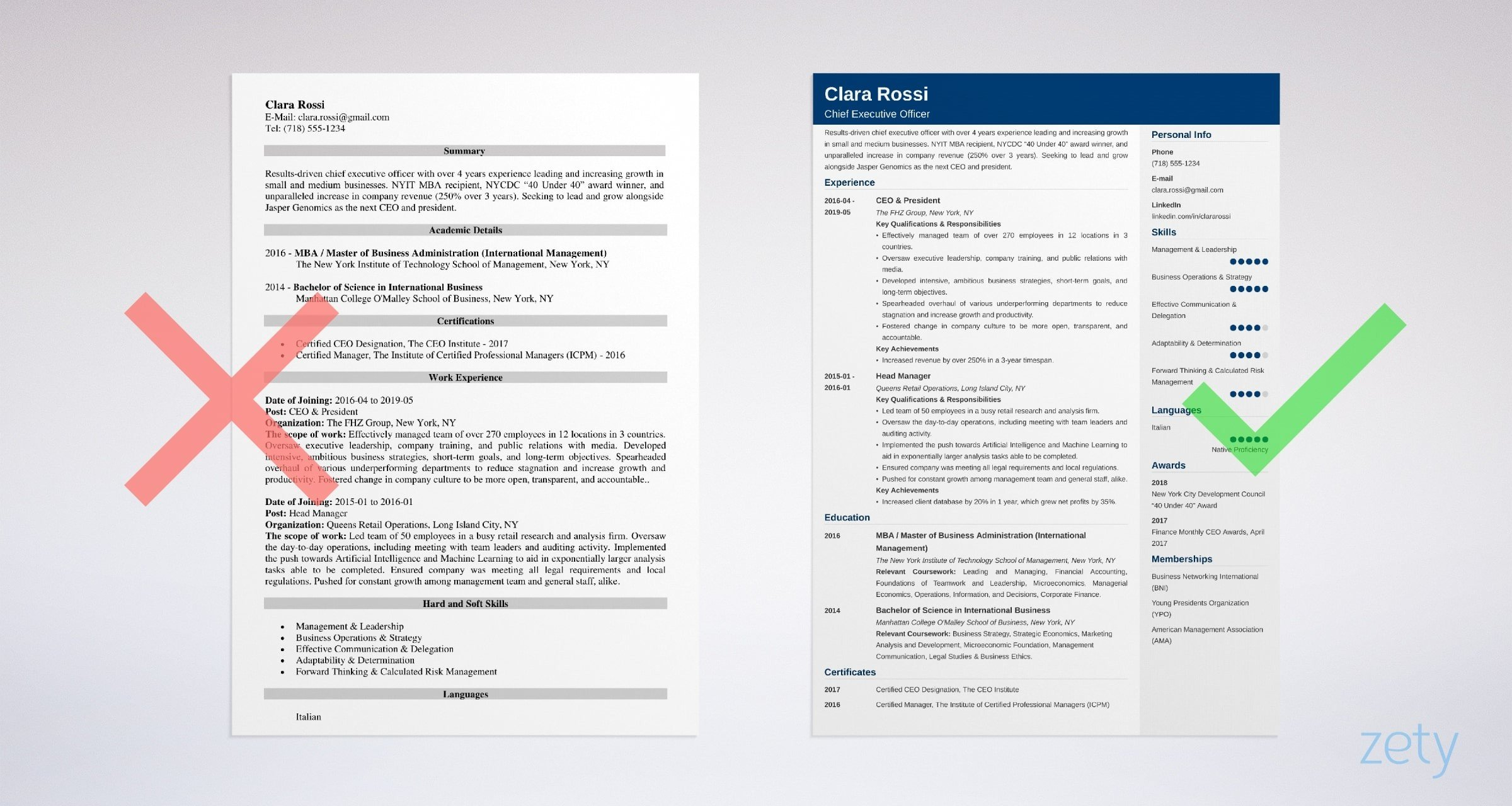 Ceo Resume Template Ceo Resume Example Full Writing Guide 20 Tips