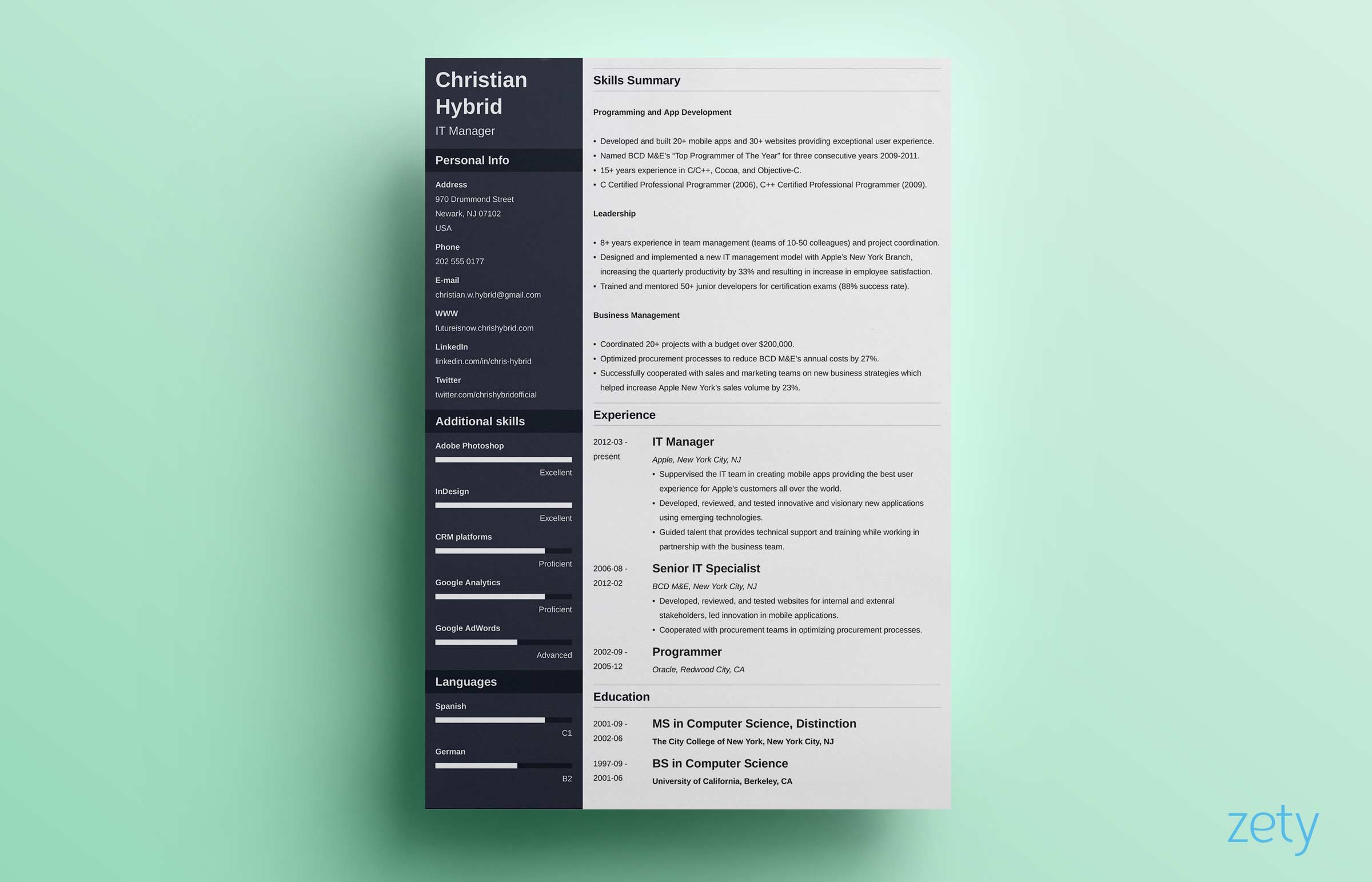 combination resume template zety