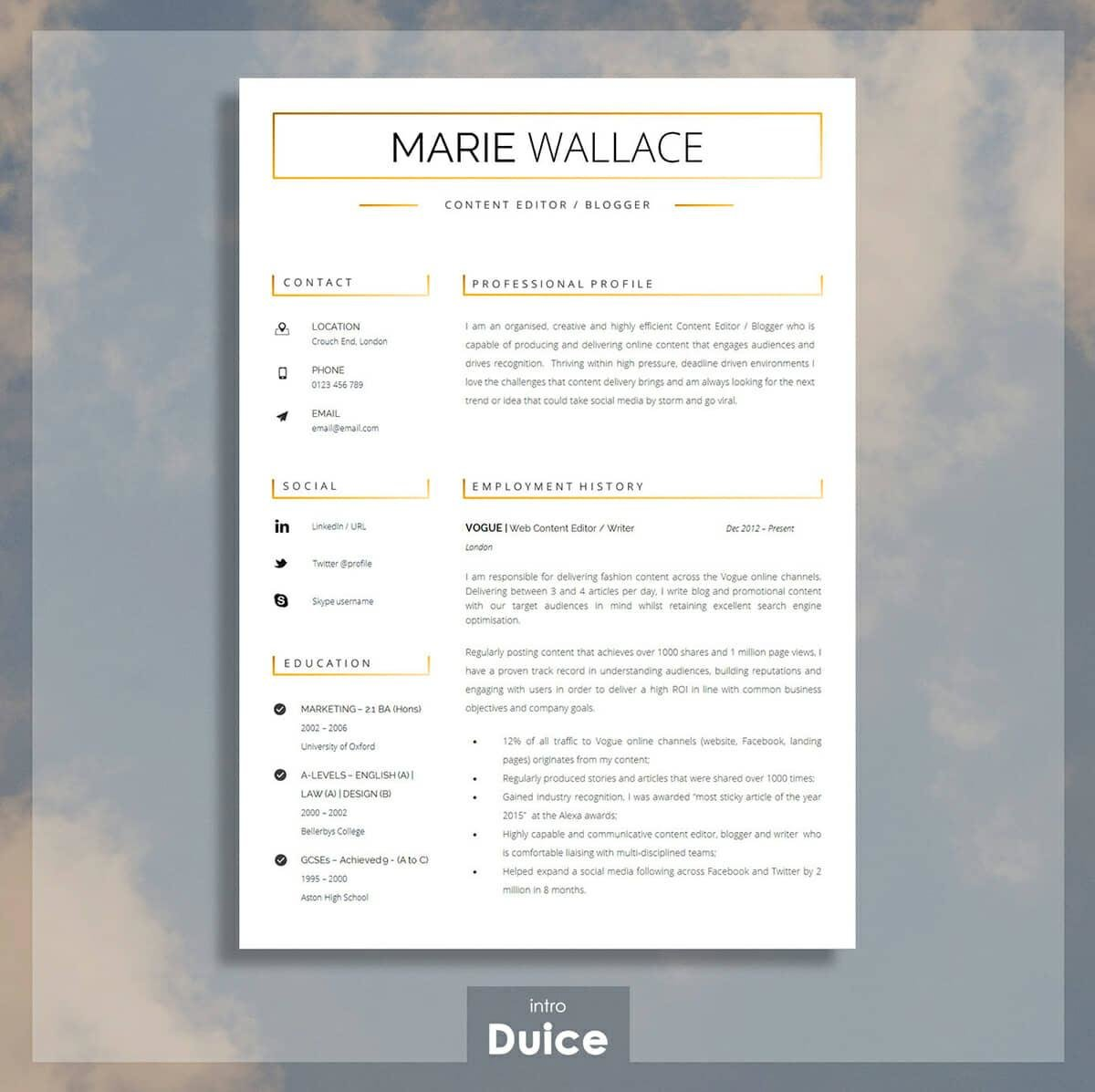 Great Simple Resume Example