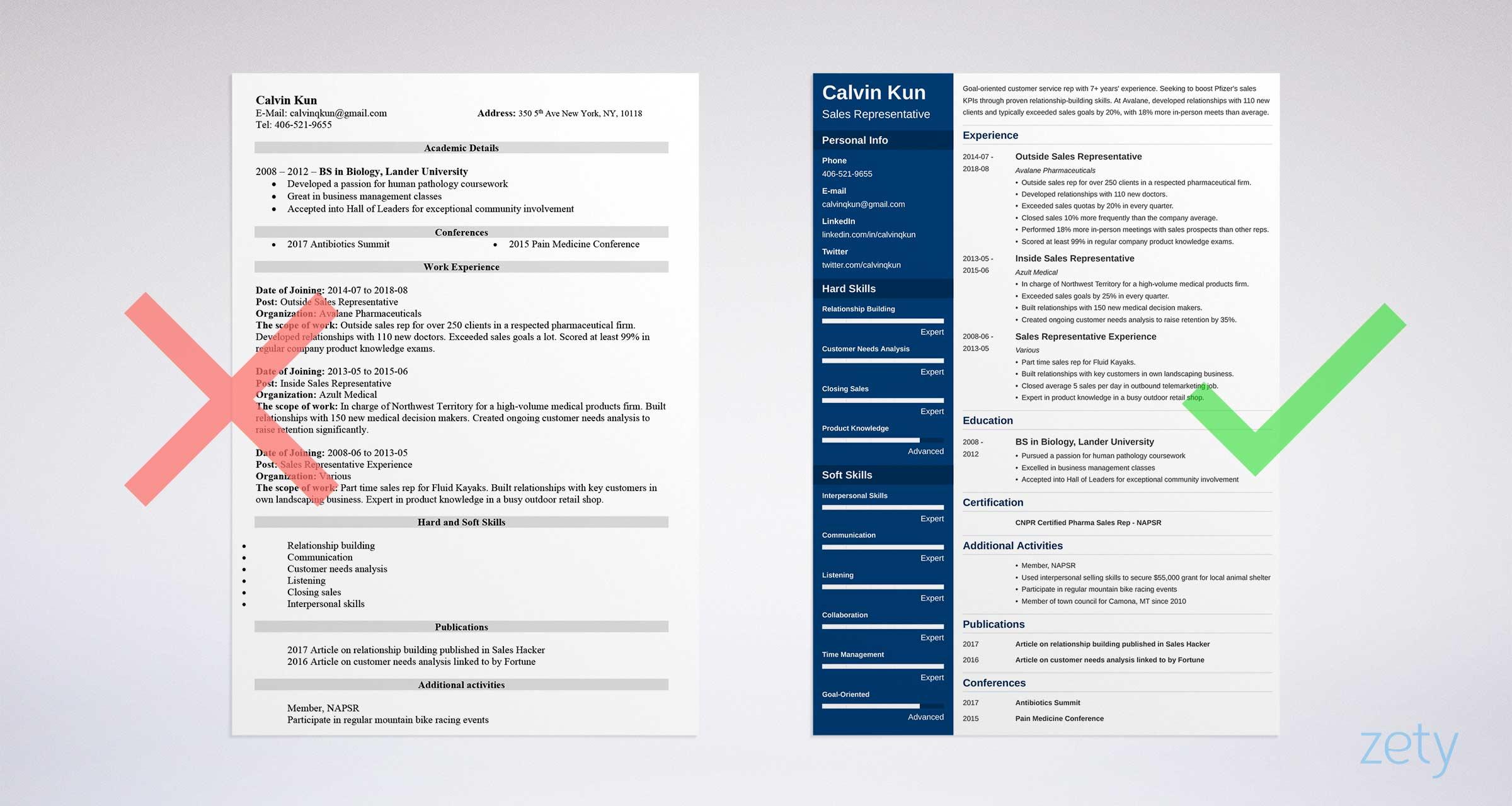 Sales Representative Resume Sample  Writing Guide 20 Examples