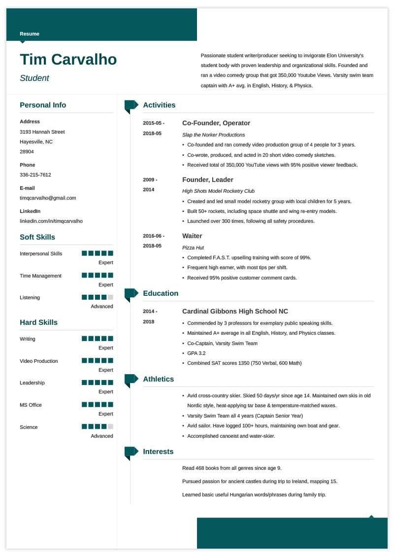 sample resume zety