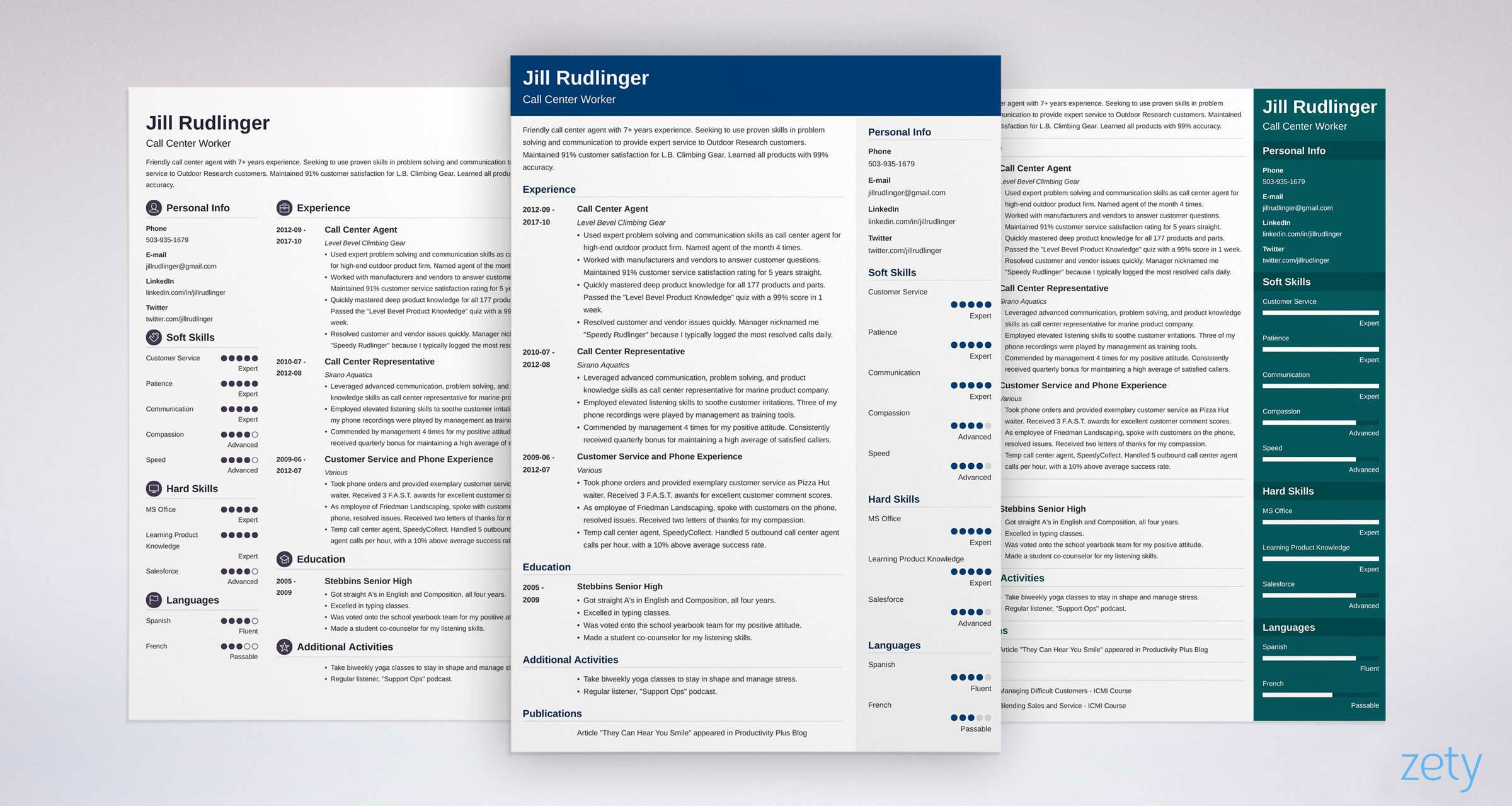 Professional Resume Templates Examples