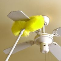 Hampton Direct Ceiling Fan Duster from Evelots