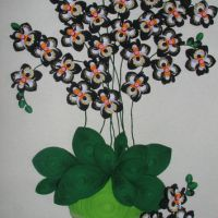 Shop Paper Quilling Flowers on Wanelo