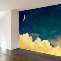 One For The Dreamers Wall Mural Decal from Walls Need Love ...