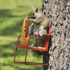 Squirrel Chair Feeder Hanging Garden Red Retro Lawn - From Plowhearth.com