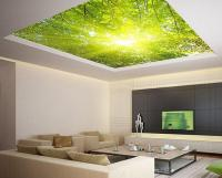 Ceiling STICKER MURAL leaves trees spring from Wallnit on Etsy