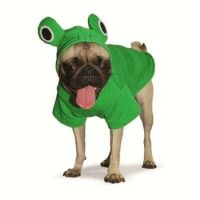 Frog Dog Halloween Costume from Snooty Pooch Boutique | Dog