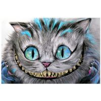 Best Cheshire Cat Art Products on Wanelo
