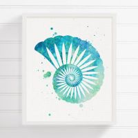 Shop Painted Seashells on Wanelo