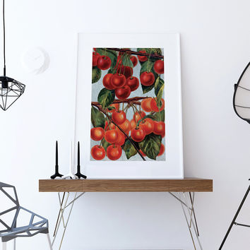 art for kitchen wall flat door cabinets shop retro on wanelo cherries print food photograph fruit vintage botanical