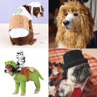 Funny Halloween Costumes for Dogs | InStyle.com