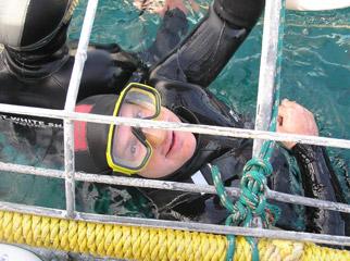 Cape Escape - Shark cage diving