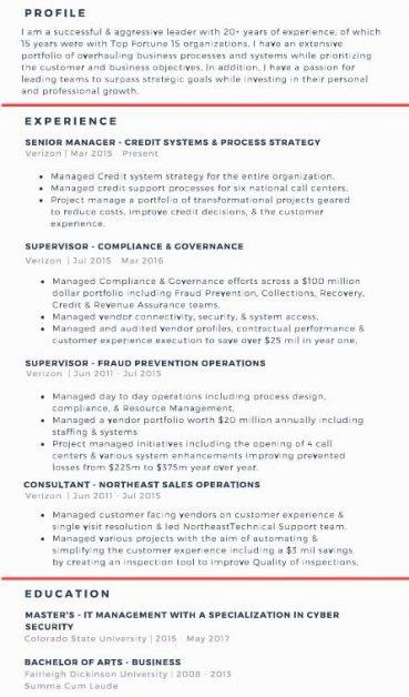 professional resume examples intel