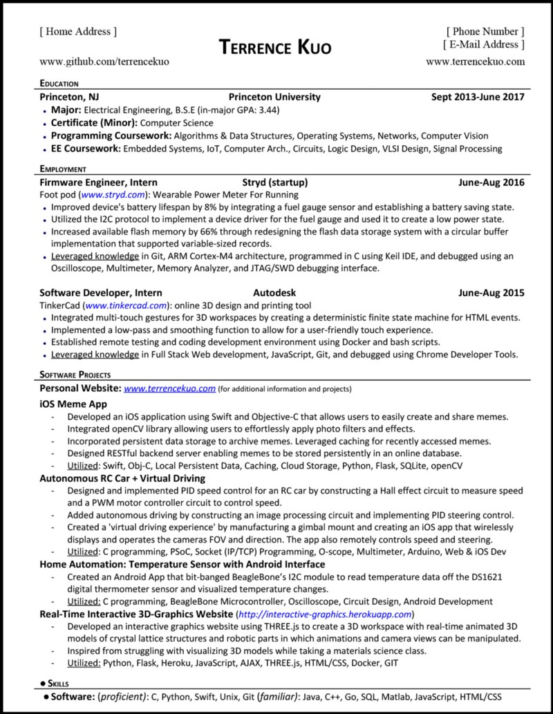go language sample resume