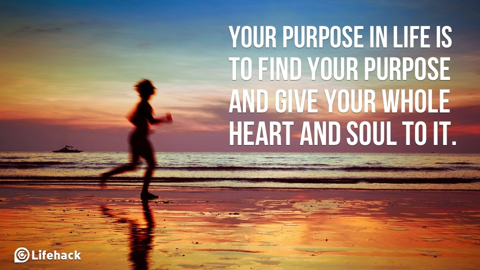 Image result for what is your purpose in life