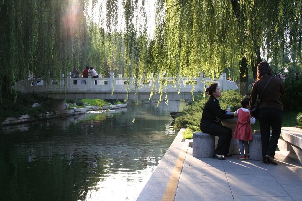 People Relaxing in a Beijing Park