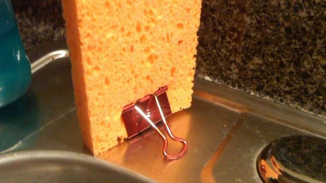 Sponge Binder