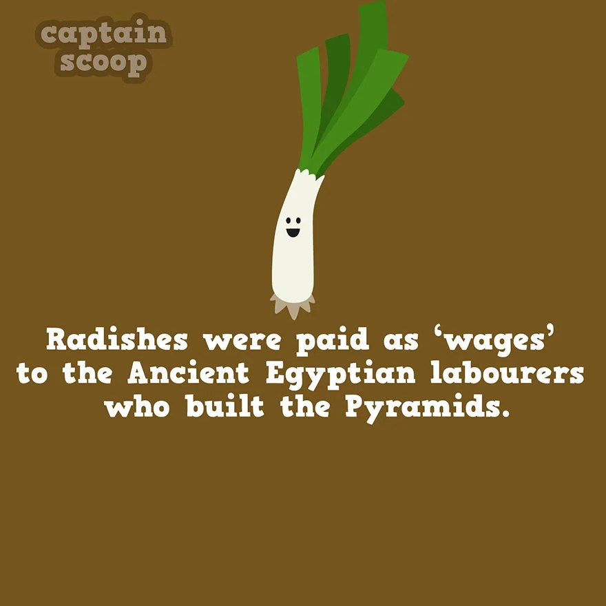 interesting-facts-about-vegetables-121__880