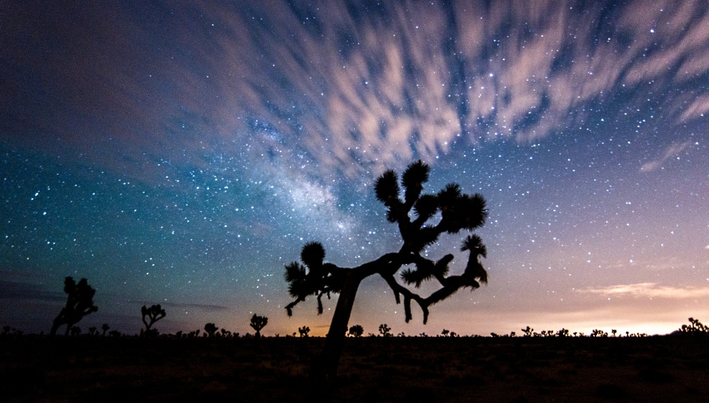 A photo of Joshua Tree State Park at Night
