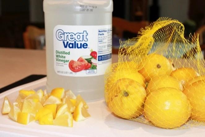 lemon-disposal-clean1