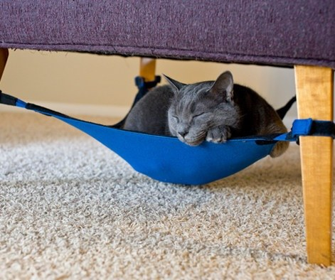25 Really Cool Cat Furniture Design Ideas Every Cat Owner