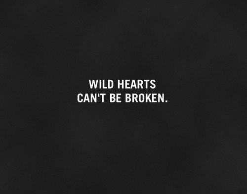 wild-hearts-cant-be-broken