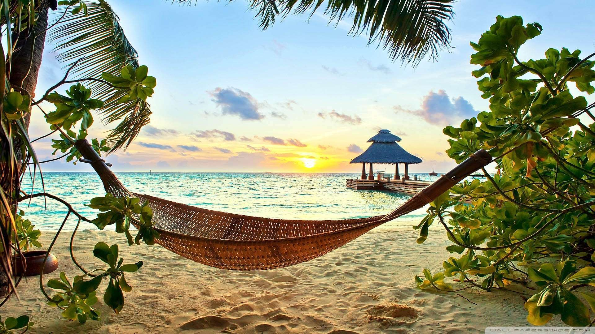 Psychology Wallpaper Quotes 10 Paradise Like Destinations For Divers