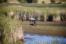 Wildlife Survey Drones