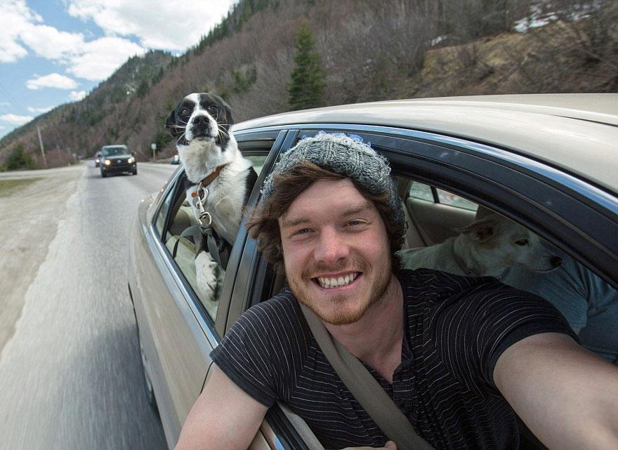 funny-animal-selfies-allan-dixon-23