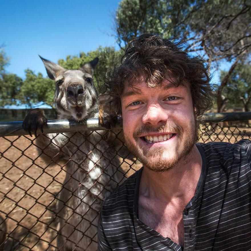 funny-animal-selfies-allan-dixon-12