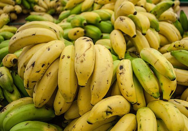 512px-Cavendish_banana_from_Maracaibo