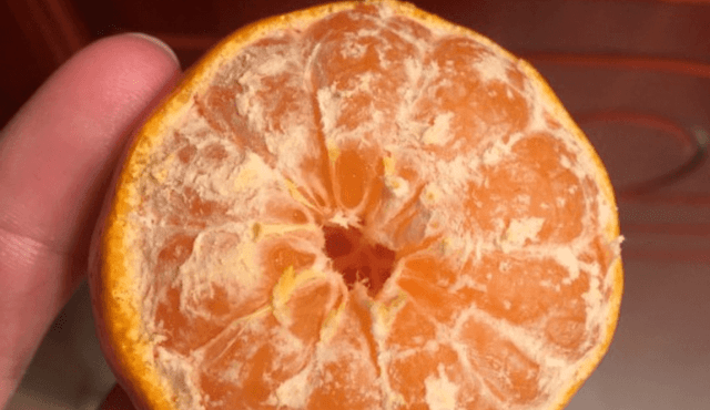 Neat little orange trick