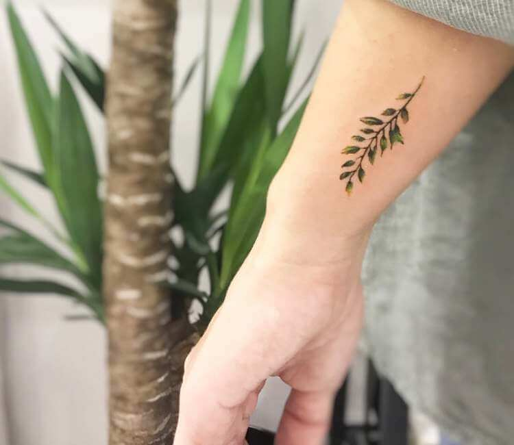 Plant tattoo by Cana Arik Tattoos  Post 23990