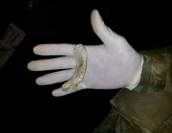 Pedaços de ossos encontrados nas proximidades do Instituto Royal.