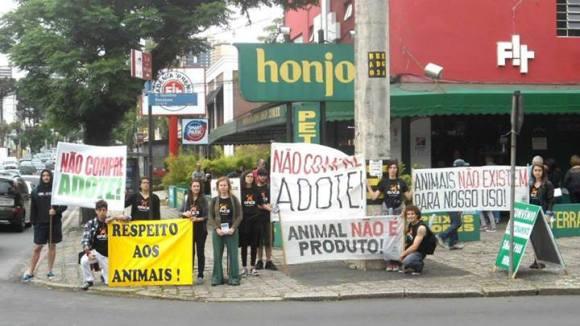 onca-protesto-direitos-animais-curitiba-honjo
