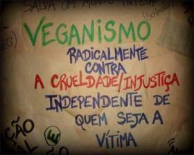 camaleão-veganismo-vegetarianismo-o-que-é-direitos-animais