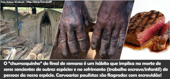 churrascarias-de-sao-paulo-consomem-carvao-produzido-por-trabalho-escravo