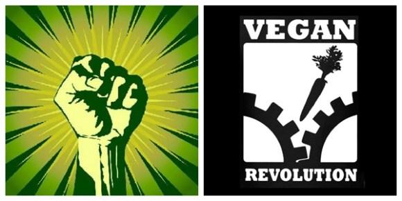 veganismo-direitos-humanos-feminismo-ecoanarquismo-libertario-elitismo-anarcoveganismo