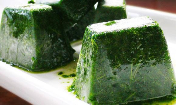 gelinho-de-couve-sucos-verdes-atma-veg-sucos-funcionais-nutrição-vegetariana