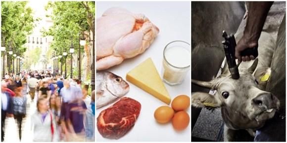 o-problema-em-nosso-planeta-nao-e-a-quantidade-de-humanos-sonia-felipe-vegetarianismo-veganismo