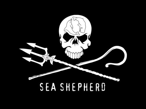 qual-o-significado-do-logotipo-da-sea-shepherd-conservation-society-global-Jolly-Roger