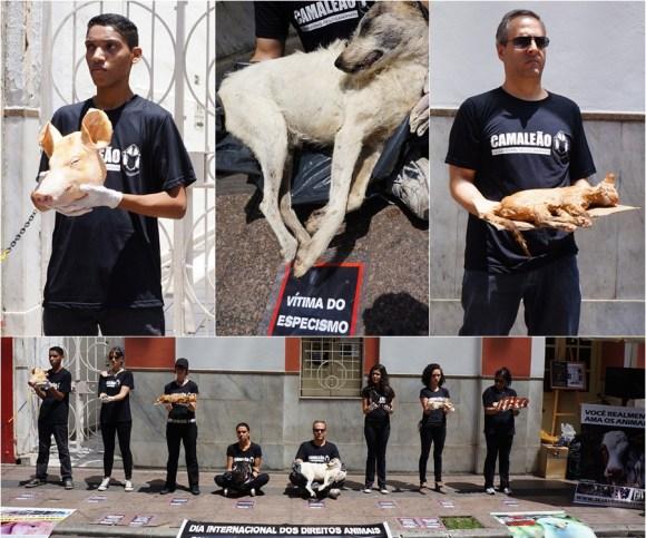 ong-CAMALEÃO-realiza-ato-impactante-para-o-dia-internacional-dos-direitos-animais-2015