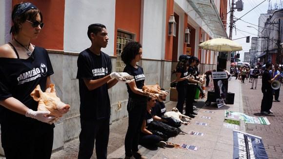 ong-CAMALEÃO-realiza-ato-impactante-para-o-dia-internacional-dos-direitos-animais
