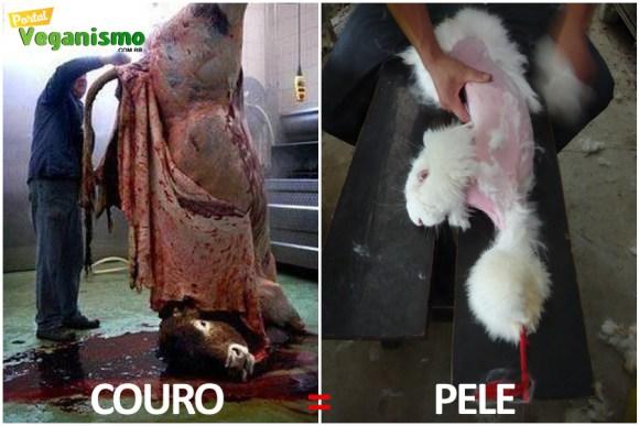 couro-pele-animal-qual-diferenca-especismo-direitos-animais-veganismo-portal-noticias
