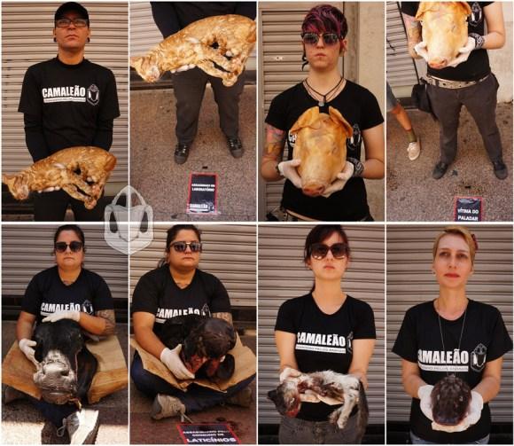 vegetarianismo-veganismo-ativismo-dia-internacional-direitos-animais-brasil-camaleao-libertacao-animal-especismo