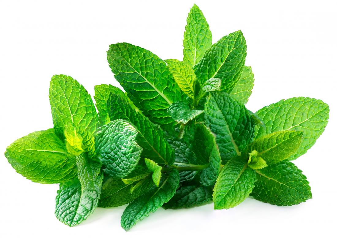 What are the health benefits of spearmint?
