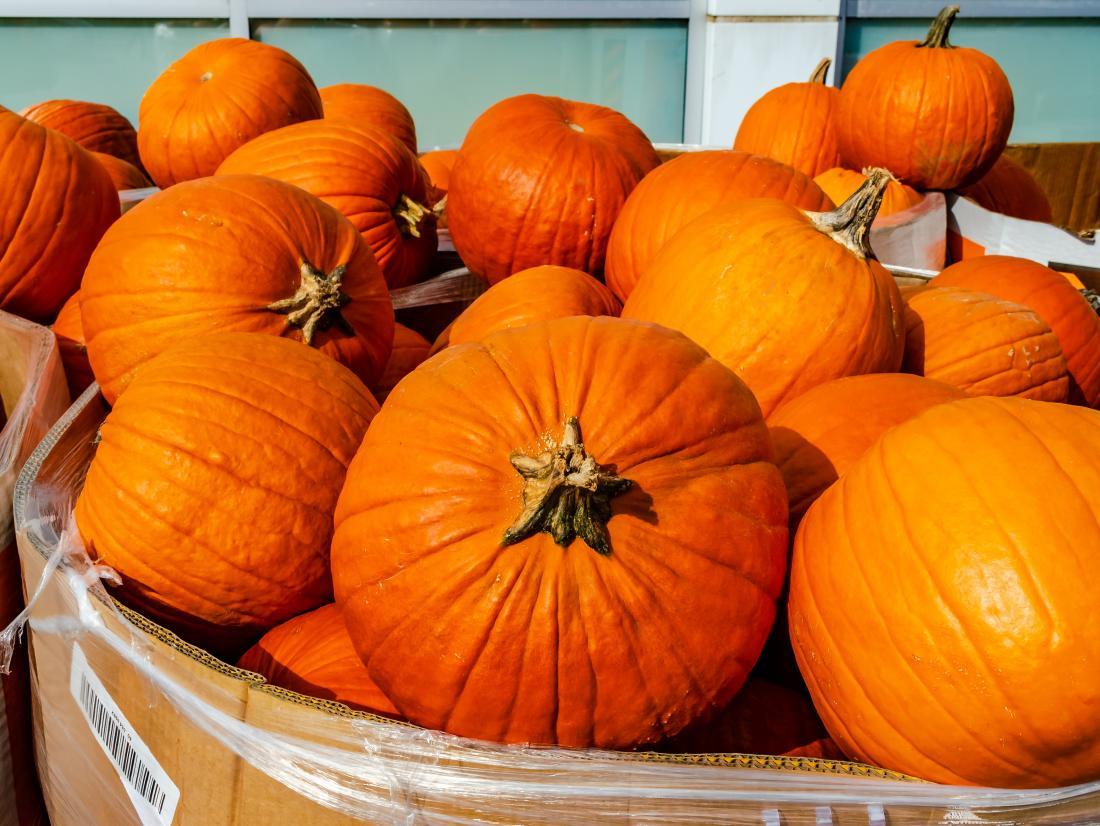 Pumpkins  Health Benefits And Nutritional Breakdown